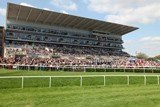Doncaster revises admission prices for 2010