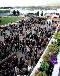 Betting Tips for Cheltenham Thursday: Noble Prince has his ideal conditions today