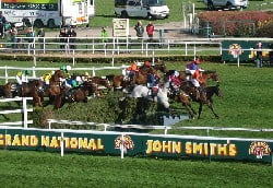 Psychic Grand National Tips