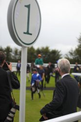Betting Tips for Goodwood: Chachamaidee looking better than ever
