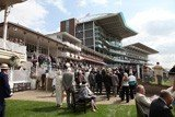 Betting tips for York: Royal Rascal can follow up decent Chester run