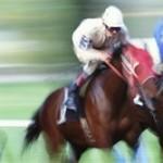 Copper's equestrian revolution