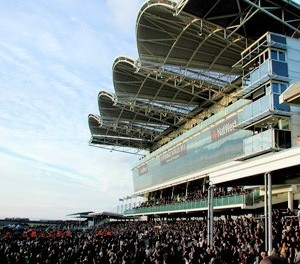 Betting tips for Newmarket: Cape Factor should go close in Bosra Sham Fillies Stakes