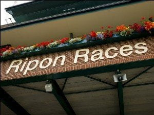 Betting TIps for Ripon: Course experience could aid Tumblewind