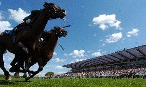 Betting tips for Sandown: Brown Panther looks better than ever