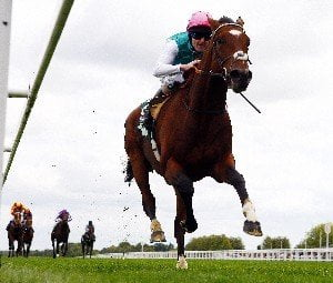 Qipco sussex stakes betting sites lay in betting terms su