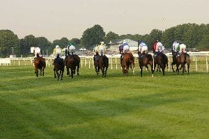 Betting tips for Windsor: Perfect Cracker aims for course and distance double