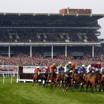 New race in the OLBG Mares' Road To Cheltenham at The International
