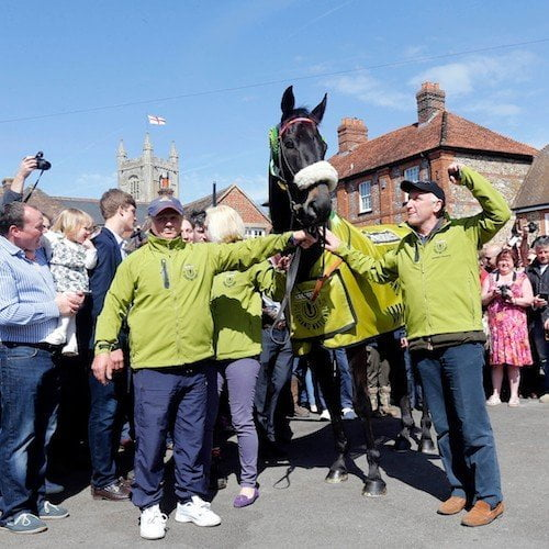 Grand National 2015, Many Clouds
