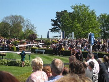 GUIDE TO THE JULY FESTIVAL AT NEWMARKET 2015