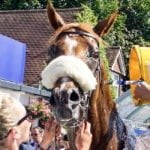 Sandown Racecourse, Sandown Races, Sandown Eclipse