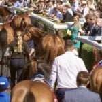 Horse Racing: 5 to follow this weekend