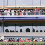 Horse Racing Remains One of the Top Sports To Bet On