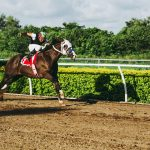 HORSE RACING EVENTS IN THE USA FOR 2021