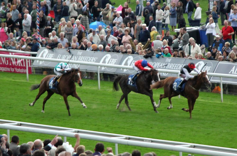 IY Galtres Stakes 2019 York Search For A Song 2