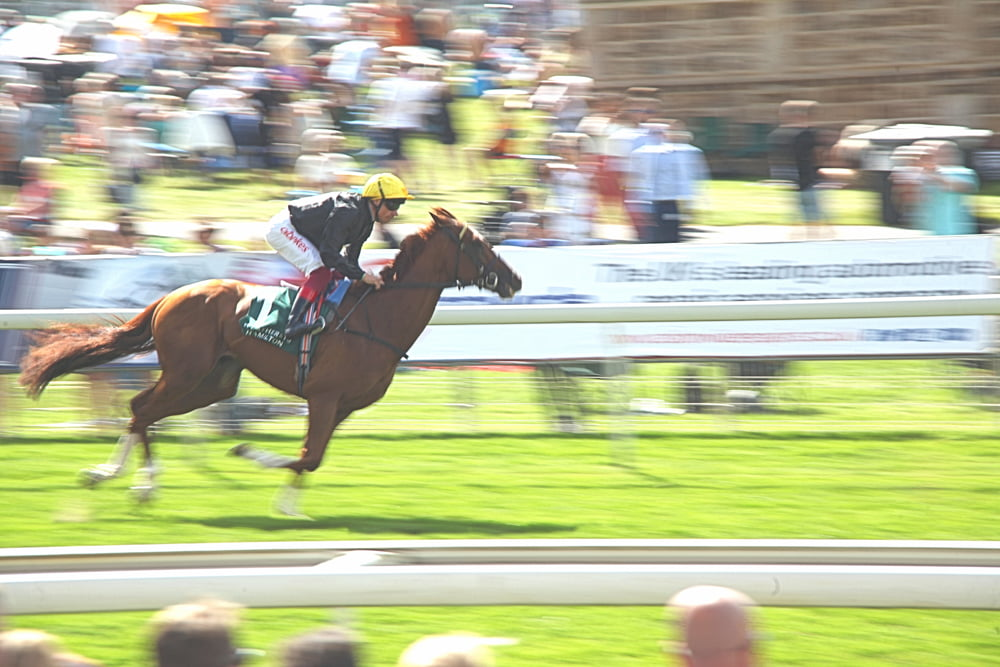 Horse racing feeling the strain
