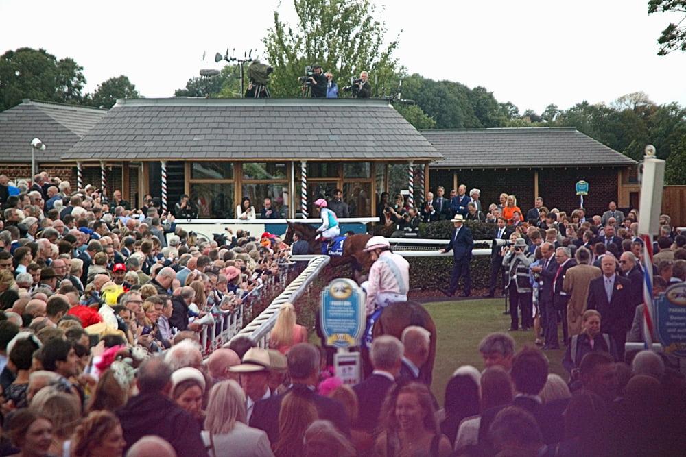 IY York Racecourse Parade Ring