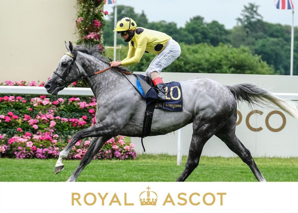 Ascot Day 2 Tips
