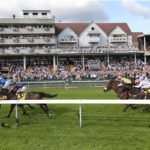Oxted heads 15 in Haydock Sprint Cup on Saturday