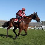 Cheltenham Festival 2021: Tiger Roll 'is a sensation' in Cross Country Chase