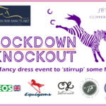 Fundraiser for The Racehorse Sanctuary