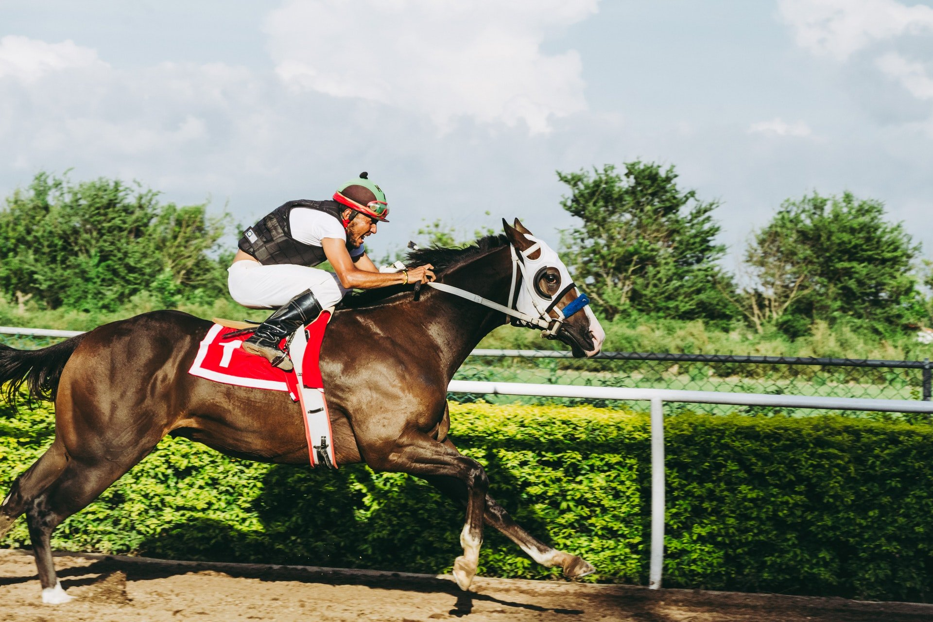 Essential Tips for Horse Betting